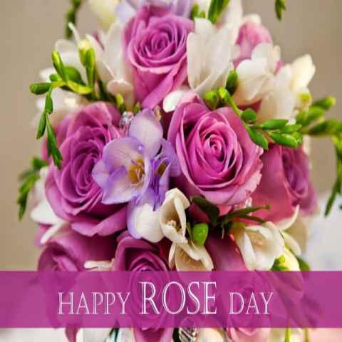 rose-day-status-hindi